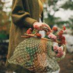 crizanteme superbe