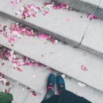 petale de magnolii