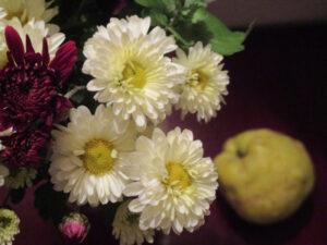 crizanteme si o gutuie lucruri interesante
