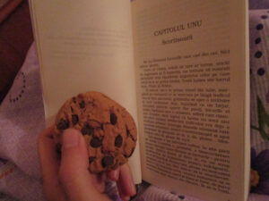 lectura elif shafak