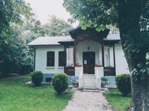 biblioteca mogosoaia