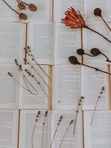 conturi instagram cu cărți